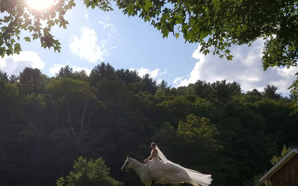 A bride in a white gown with a long veil riding a white horse, on a sunny day