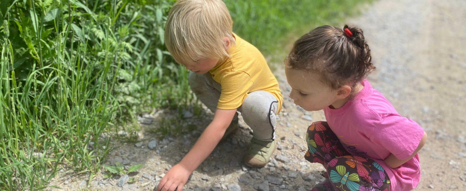 Preschool children looking for rocks.