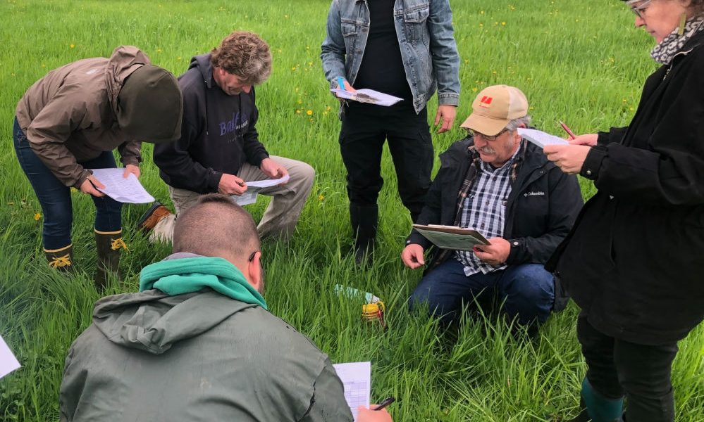 A class of adults are training to become verified in consulting grasslands.