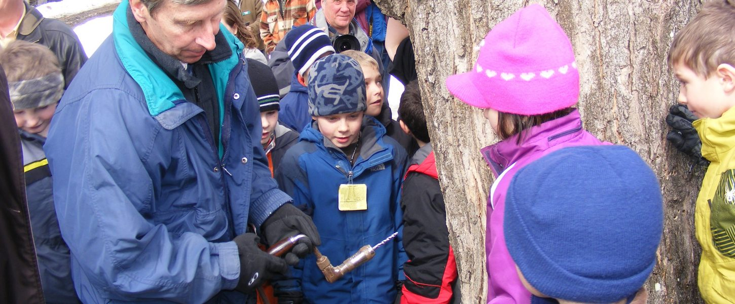an adult showing kids how to tap a maple tree for syrup