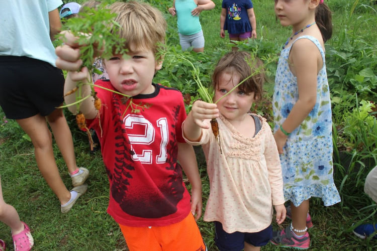 Two kids holding up tiny carrots that they harvested