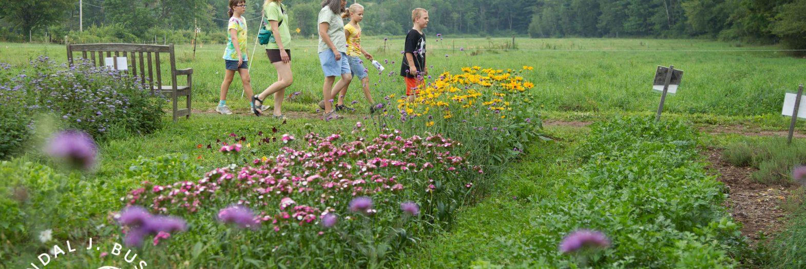 Kids touring the farm