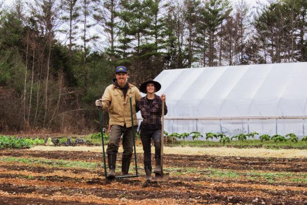 Two regenerative farmers in the field at Stonewall Farm.