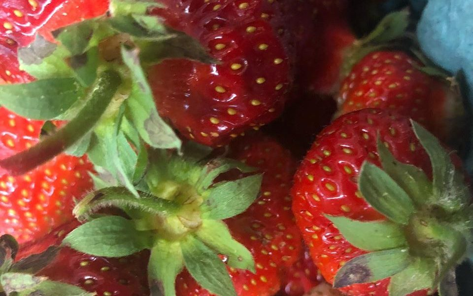a close up of ripe Strawberries