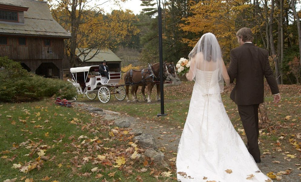 Bride and Groom walk hand-in-hand toward horse drawn carriage in the Fall.